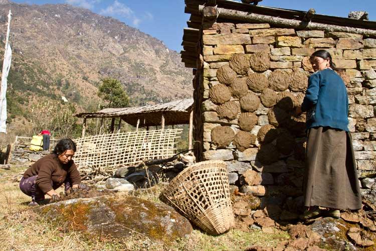 Amjilosa Kanchenjunga