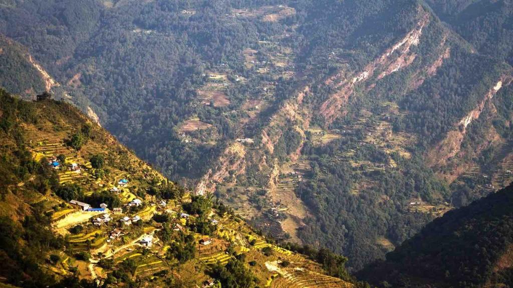 terraced field in kanchenjunga