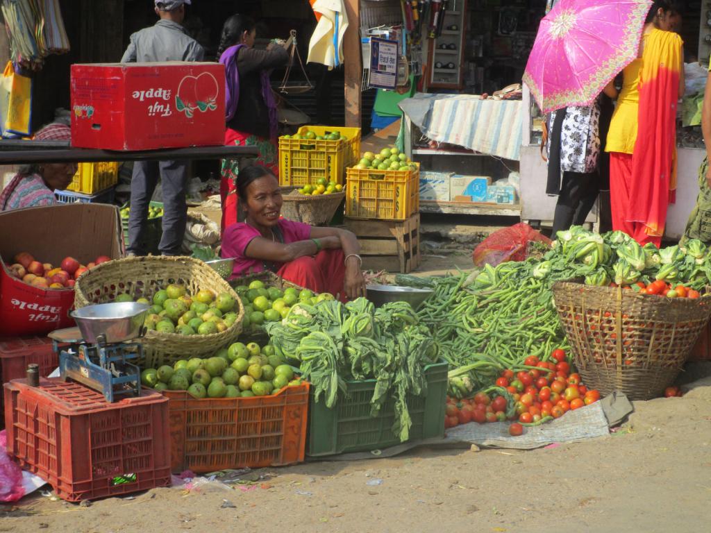 Birtamod-Kanchenjunga-Nepal