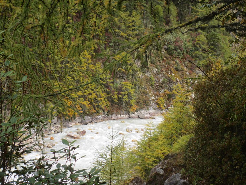 Kanchenjunga-River