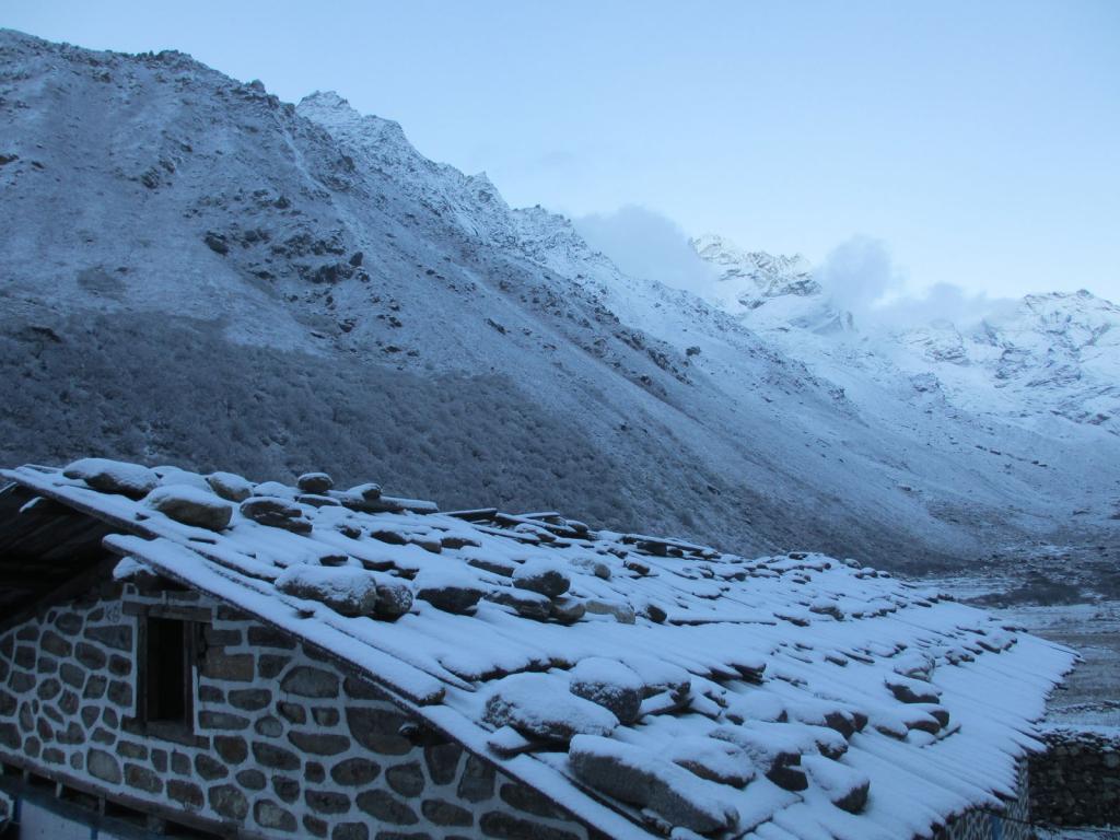 Snowfall-near-Ghunsa